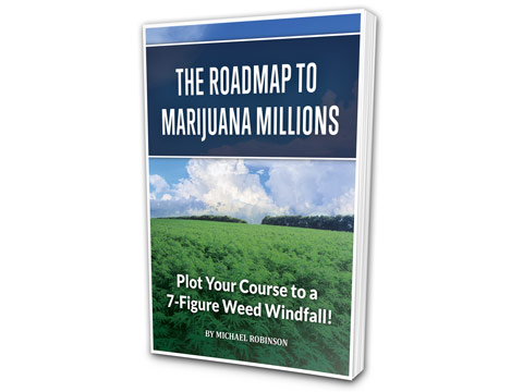The Roadmap to Marijuana Millions